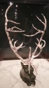 Jackoposie Oopakak, National Gallery of Canada